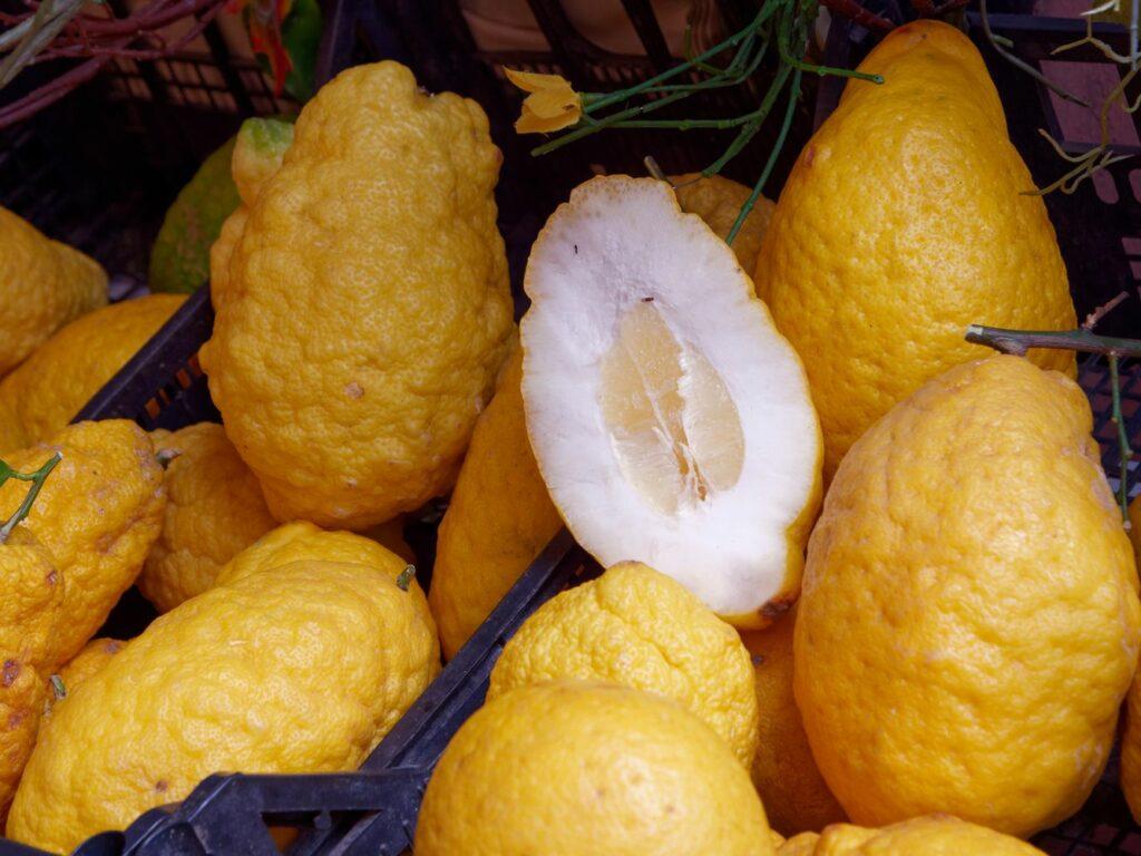 aufgeschnittene Zitronazitrone