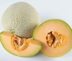 Cantaloupe-Melone 2