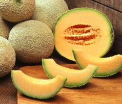 Cantaloupe-Melone Geschnitten