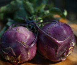 Kohlrabi Violett Ernte Eigener Garten