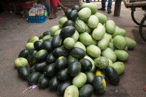 Verschiedene Sorten MElonen Wassermelonen