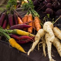 Verschiedene Karotten Ernte Aus Dem Eignen Garten