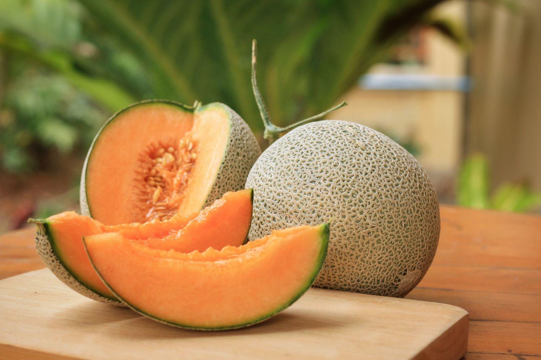Ernten der Melone
