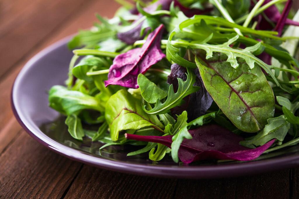 Salat mit Rucola