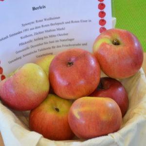 Apfel Berleis