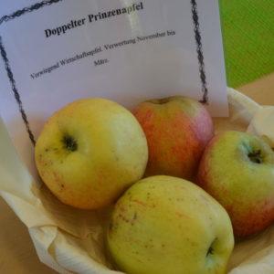 Apfel Doppelter Prinzenapfel (2)