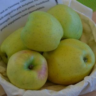 Apfel Gelber Bellefleur