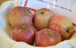Apfel Red Delicious