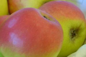 Apfel Welschisner