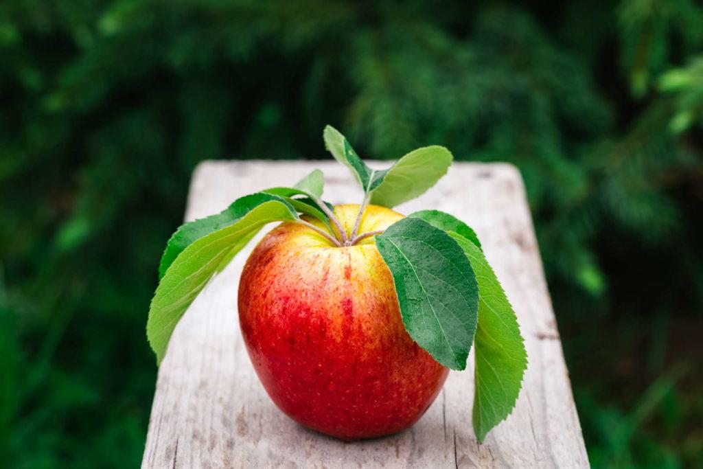 Gala Apfel auf einem Holzbrett