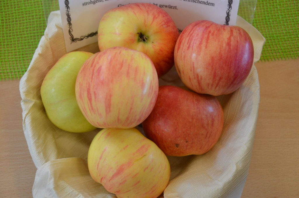 Geflammter Kardinal Äpfel in einer Schüssel