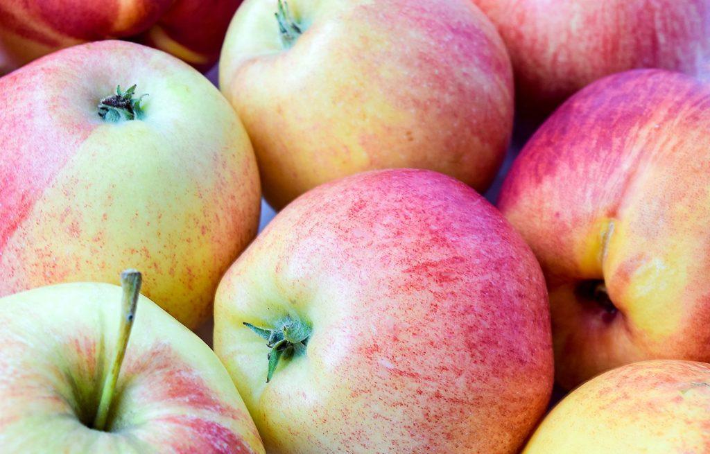 Elstar Äpfel liegen auf einem Haufen