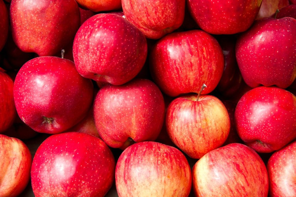 Rote Elstar Äpfel