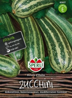 zucchini die richtigen sorten zum anbauen w hlen plantura. Black Bedroom Furniture Sets. Home Design Ideas