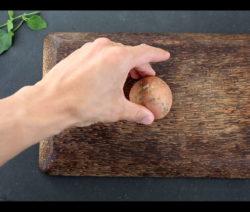 Abschnitt Der Süßkartoffel Bewurzeln