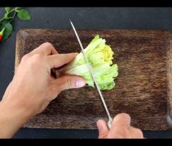 Endstücke Vom Romana-Salat Bewurzeln Und Vermehren