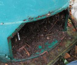Entnahme Von Kompost Aus Dem Komposthaufen