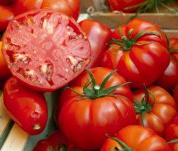 Fleischtomaten Halbierte Tomate