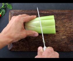 Gemüseabfall Vom Sellerie Bewurzeln Und Vermehren