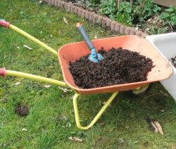 Kompost in Beete ausbringen