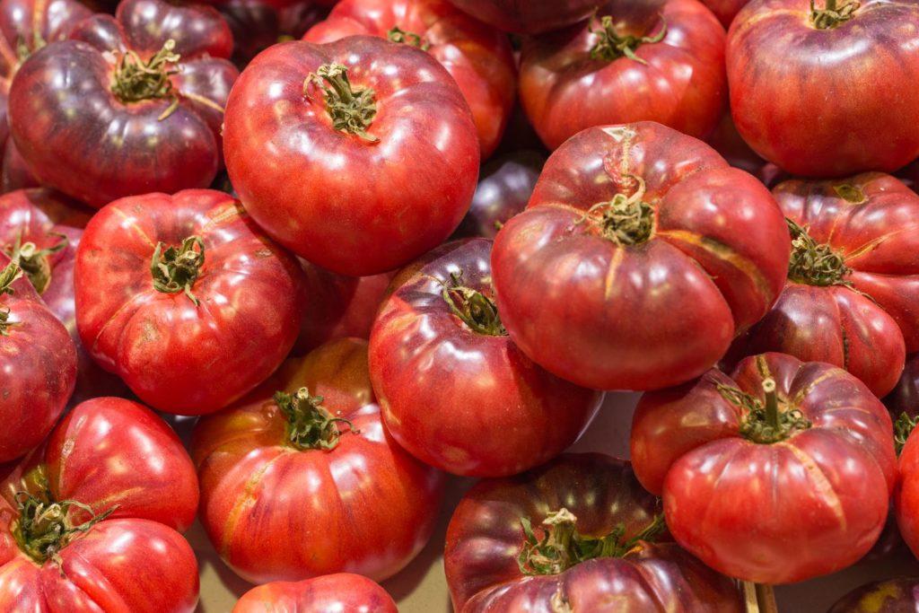 Tomatensorte Schwarze Krim