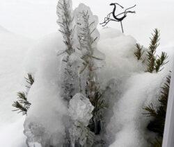 Winter Vereister Rosmarin