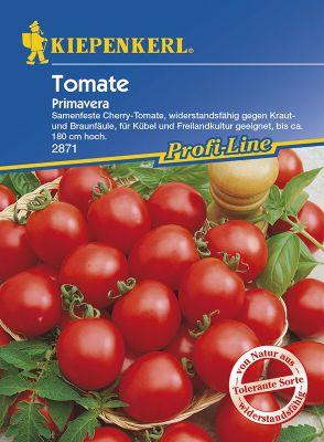 tomatensorten einteilung in die verschiedenen typen. Black Bedroom Furniture Sets. Home Design Ideas