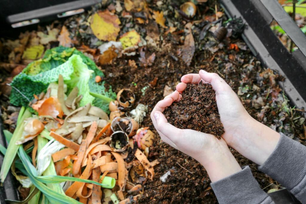 Dünger aus Kompost