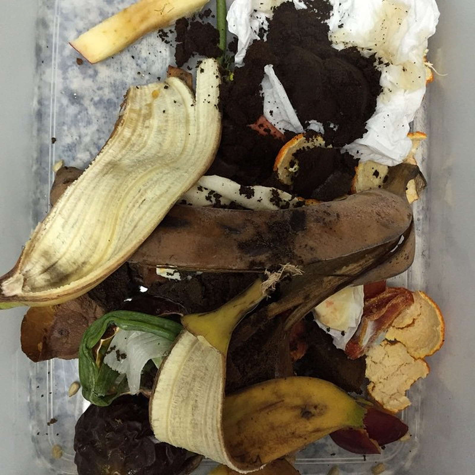 Bokashi Der Neue Komposttrend Aus Japan Plantura