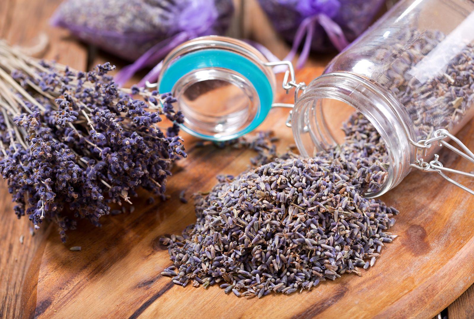 Super Lavendel trocknen: Tipps zur Lagerung & weiteren Verwendung - Plantura #KB_18