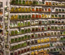 Verkaufsständer Mit Gemüsesamen