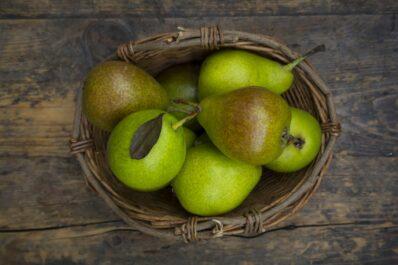 Gute Luise: Die Birnensorte im Portrait