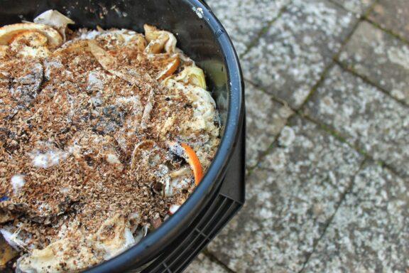 Bokashi: Der neue Komposttrend aus Japan