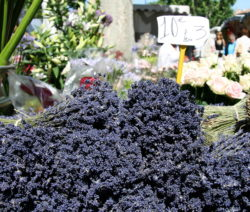 Getrockneter Lavendel Auf Markt