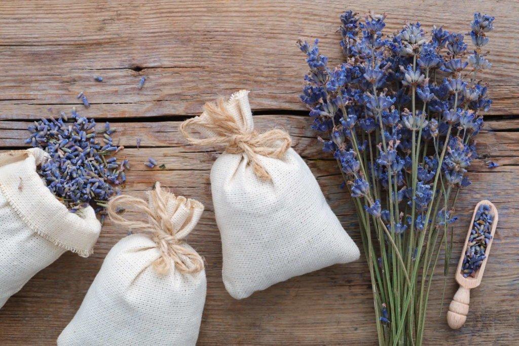 Getrockneter Lavendel in Lavendelsäckchen