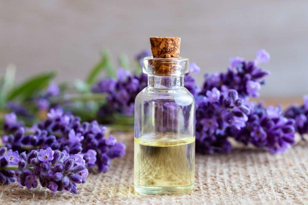 Lavendelöl in einem Fläschchen