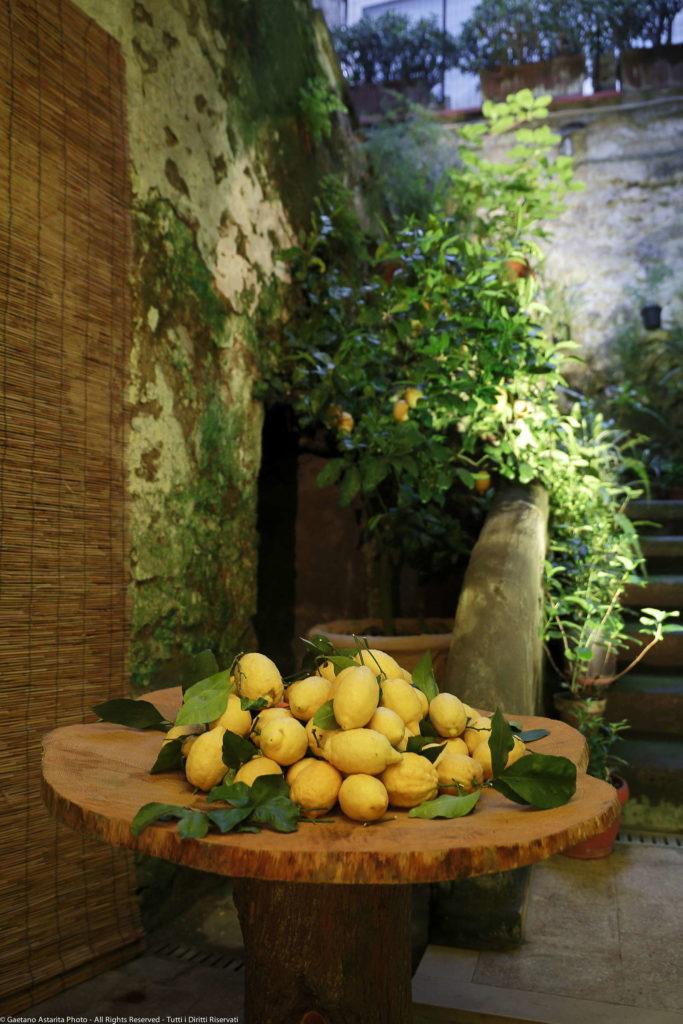 frisch geerntete Sorrent Zitronen auf Holztisch