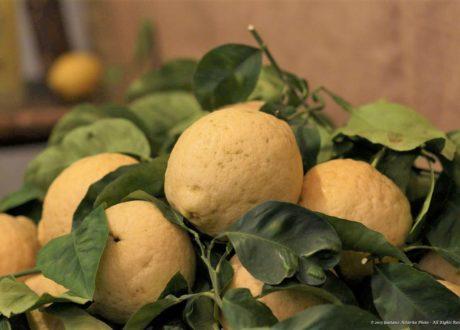 Sorrent-Zitrone: Traditionell Angebaut Und Enorm Aromatisch