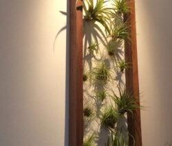 Für Ausreichend Beleuchtung Für Wandbegrünung Sorgensorgen