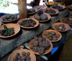 Artenvielfalt Kartoffeln Peru