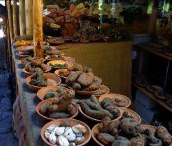 Biodiversitaet Kartoffeln Peru