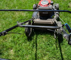 Rasenmähen Mit Rasenmäher