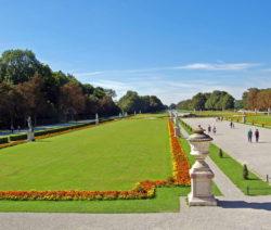 Rasen Im Schlosspark