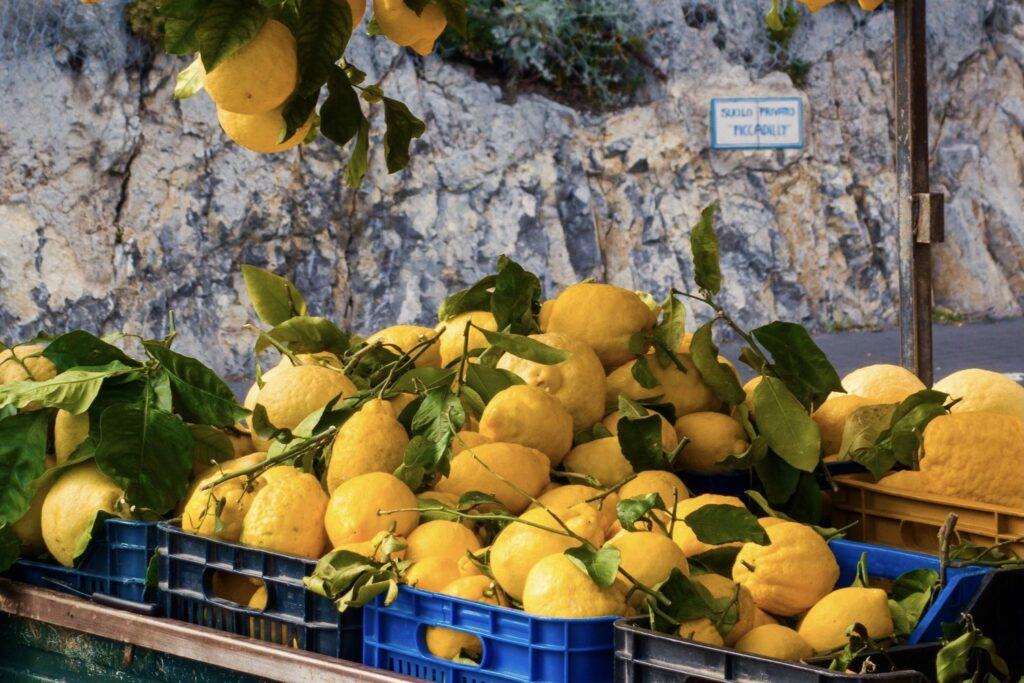 Amalfi-Zitronen zum Verkauf