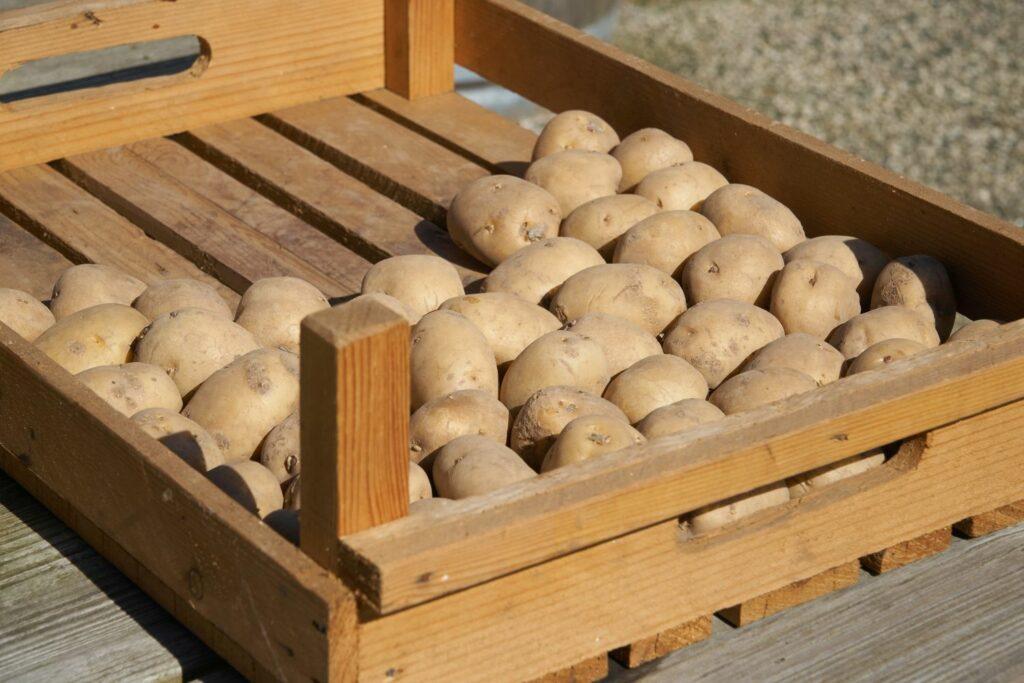 abgetrocknete Kartoffeln