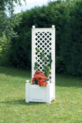 kapuzinerkresse anbauen plantura. Black Bedroom Furniture Sets. Home Design Ideas