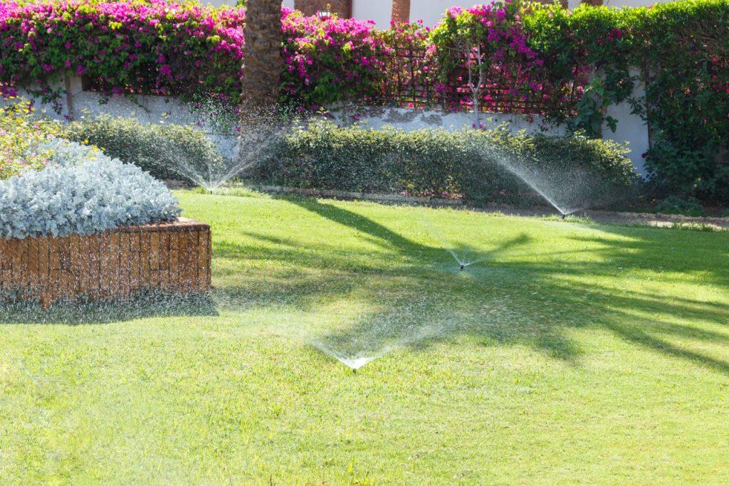 Rasen mit Wassersprenkler