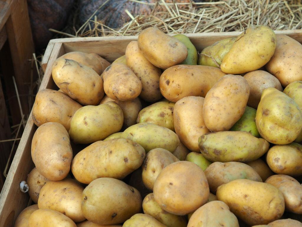 Kartoffeln lagern in der Holzkiste ist ideal