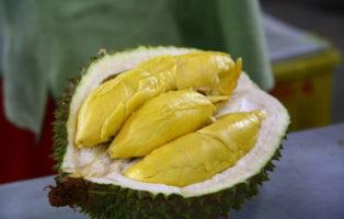 Durian Fruchtfleisch Aufgeschnitten Komische FRüchte