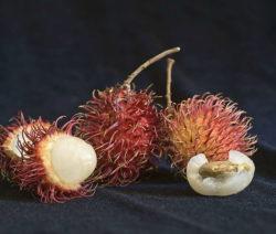 Rambutan Früchte Nahaufnahme